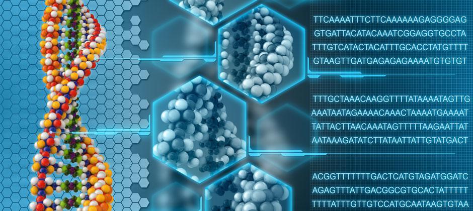 Вперше в Рівному – проведення ДНК аналізів на визначення біологічного батьківства